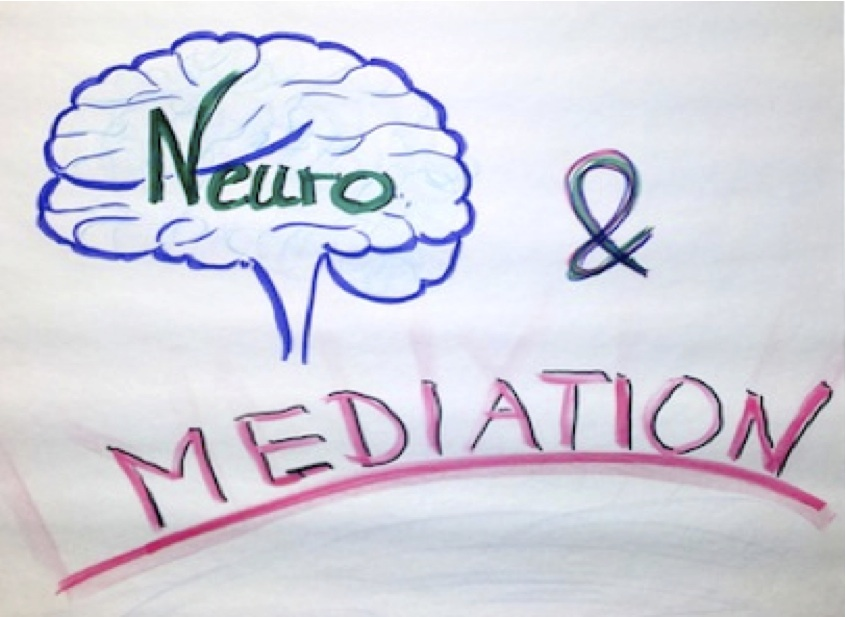 Neuro&Mediation
