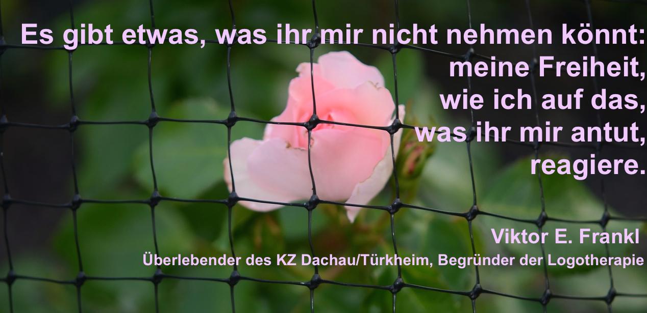 Frankl_Freiheit2